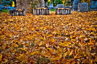 Cemetery Leaves with Head Stones