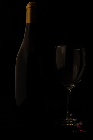 Wine Bottle & Glass